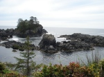 The wild coast of the west side of Vancouver Island