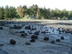 Stony beach, Vancouver Island