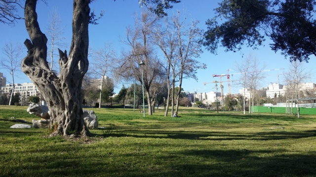 Independence Park, downtown Jerusalem